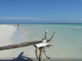 27 Cayo_Martin_Beach_maree_base